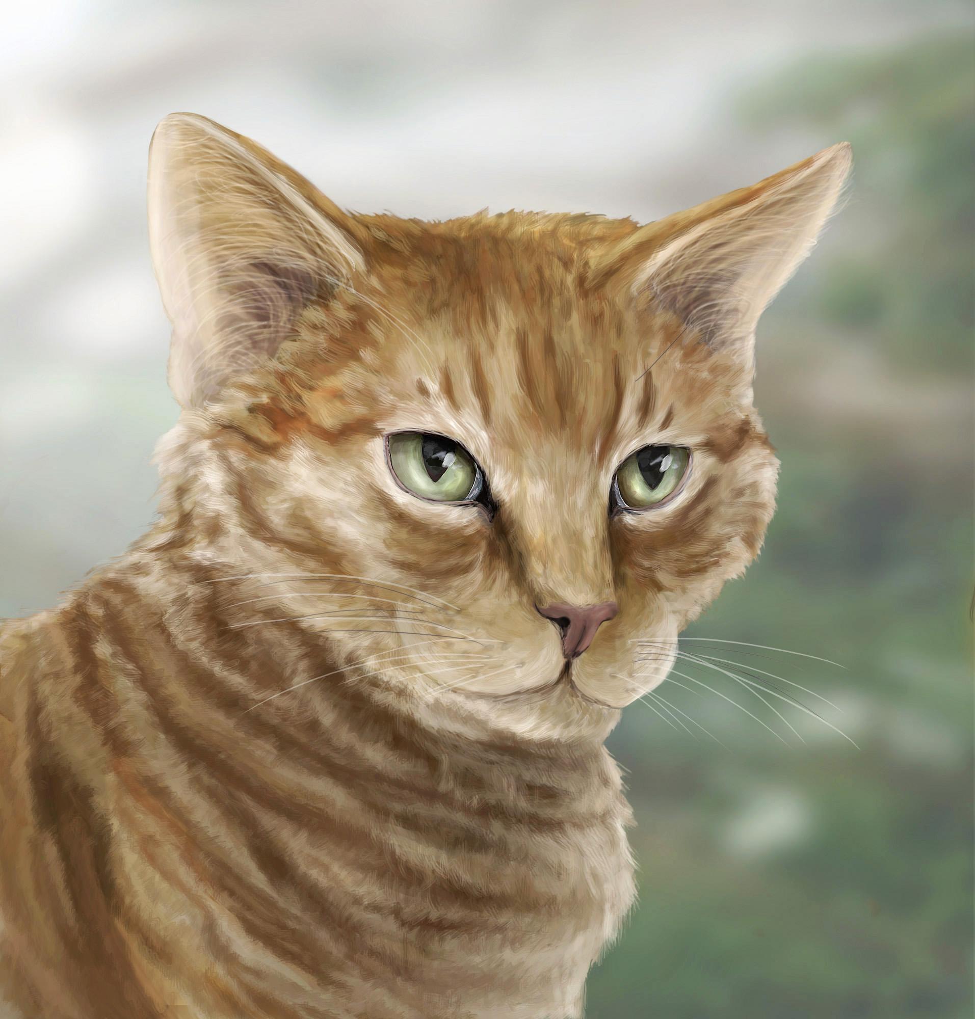 Ginger Feline