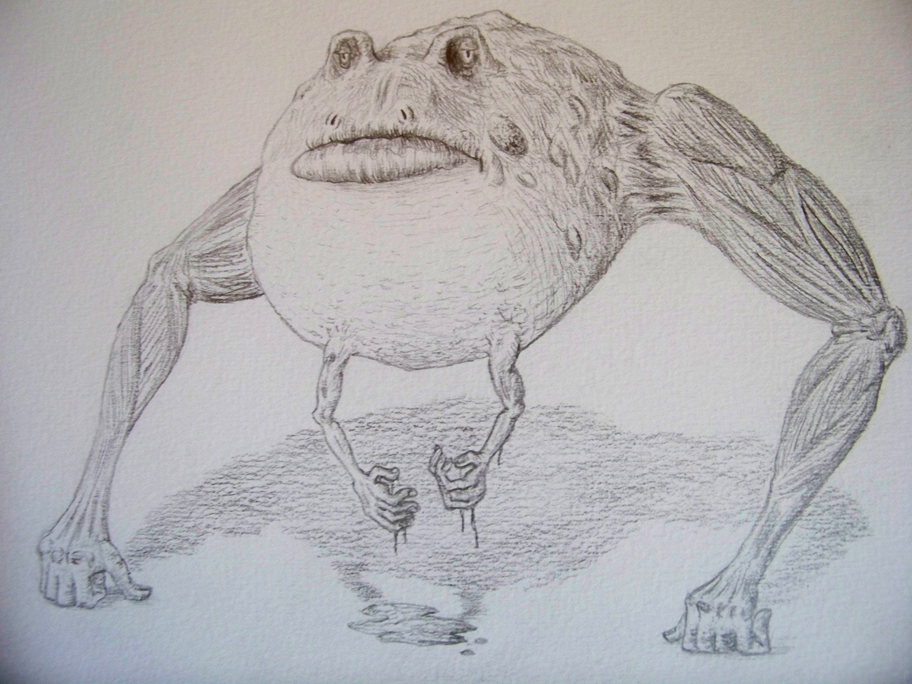 The Fondling Frog