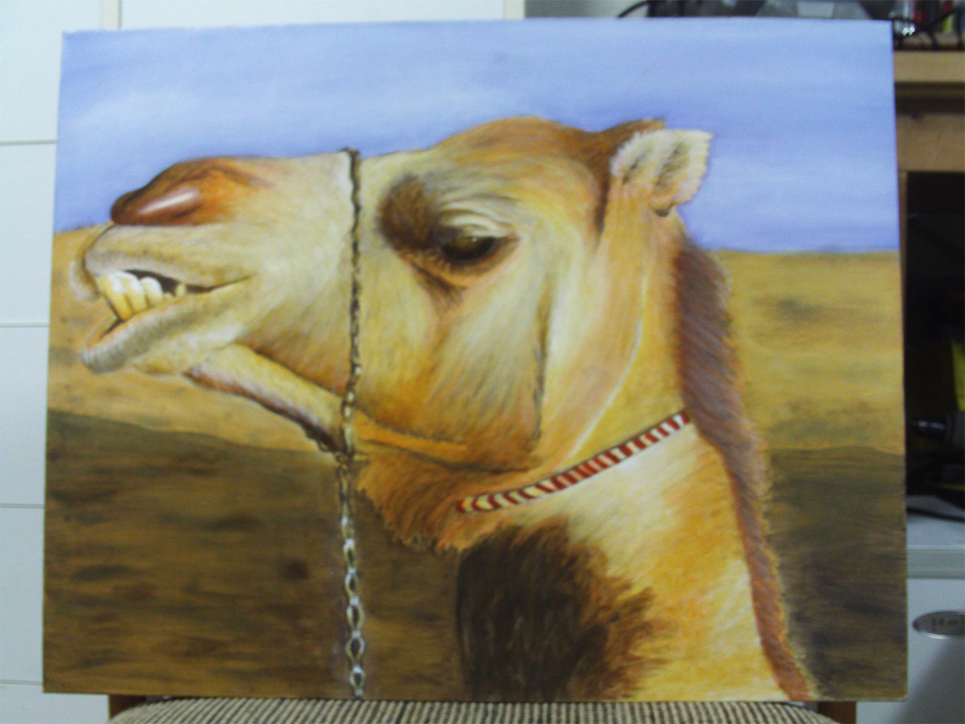 Camels Are Fun
