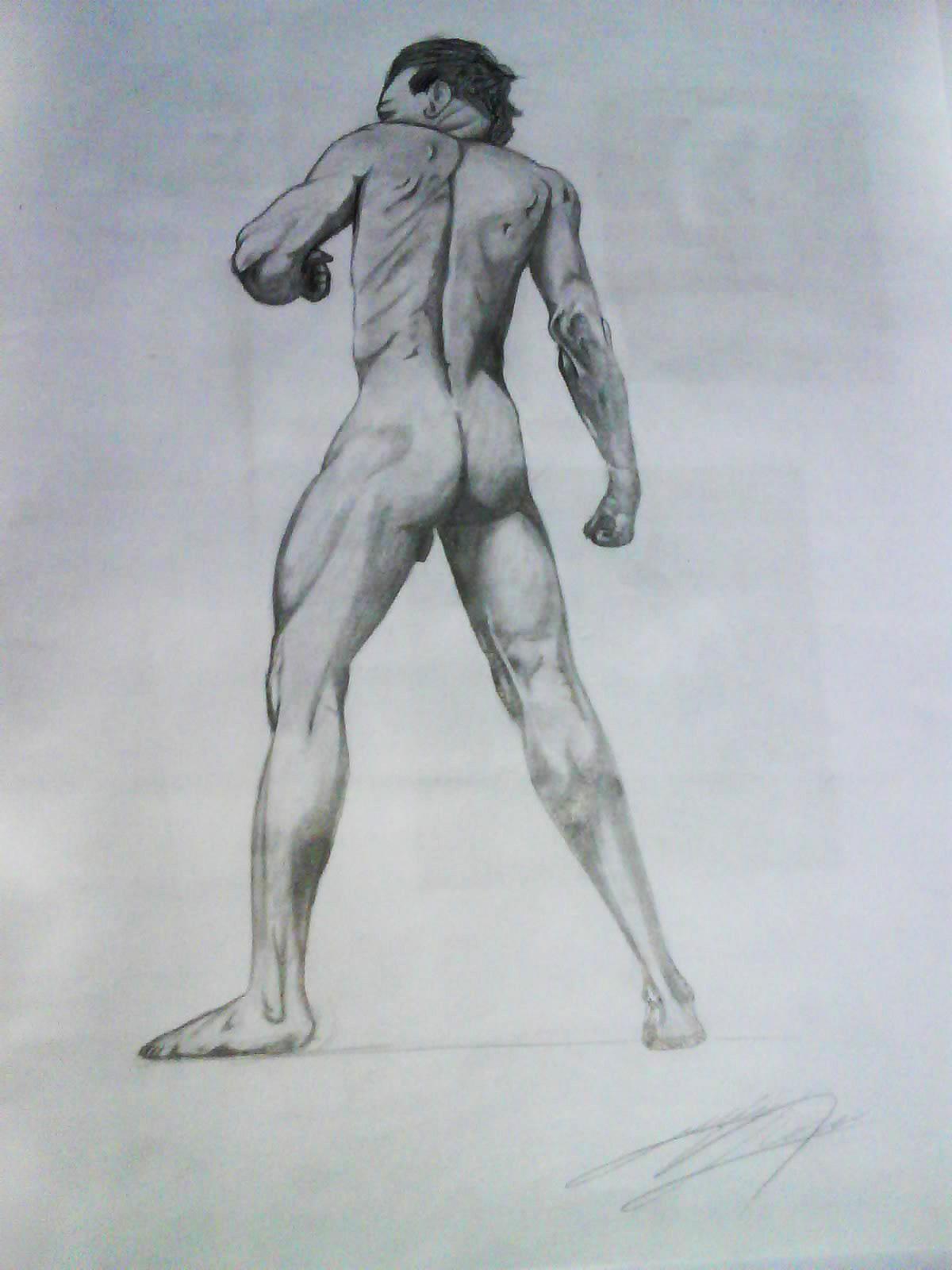 Study of Male Body