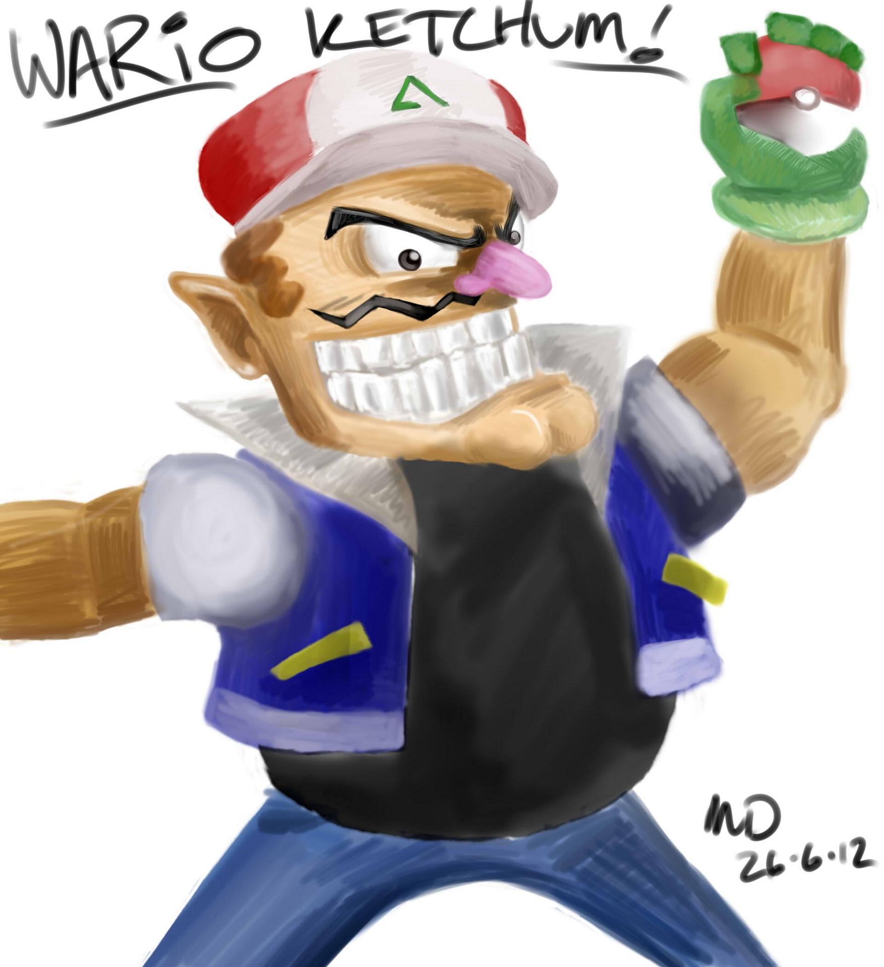Wario Pokemon
