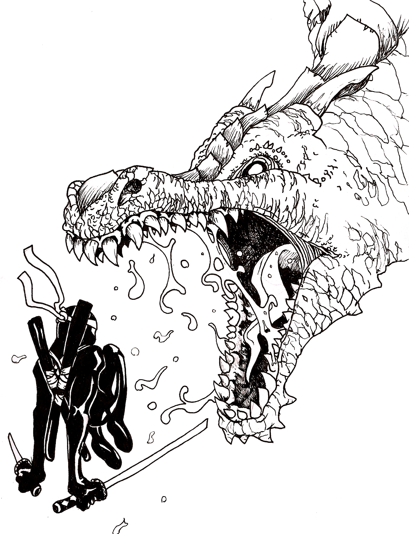 Ninja Versus Dragon