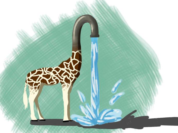 Giraffasink