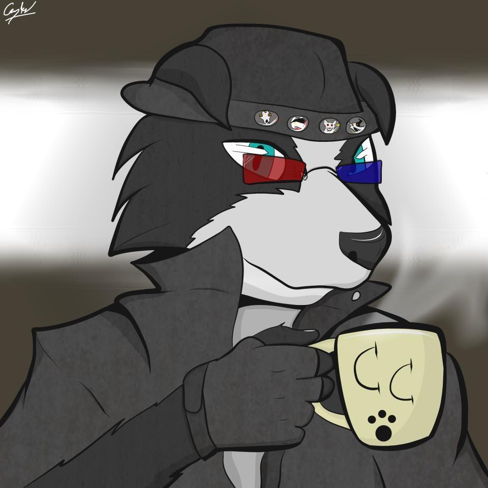 Coffee Collie