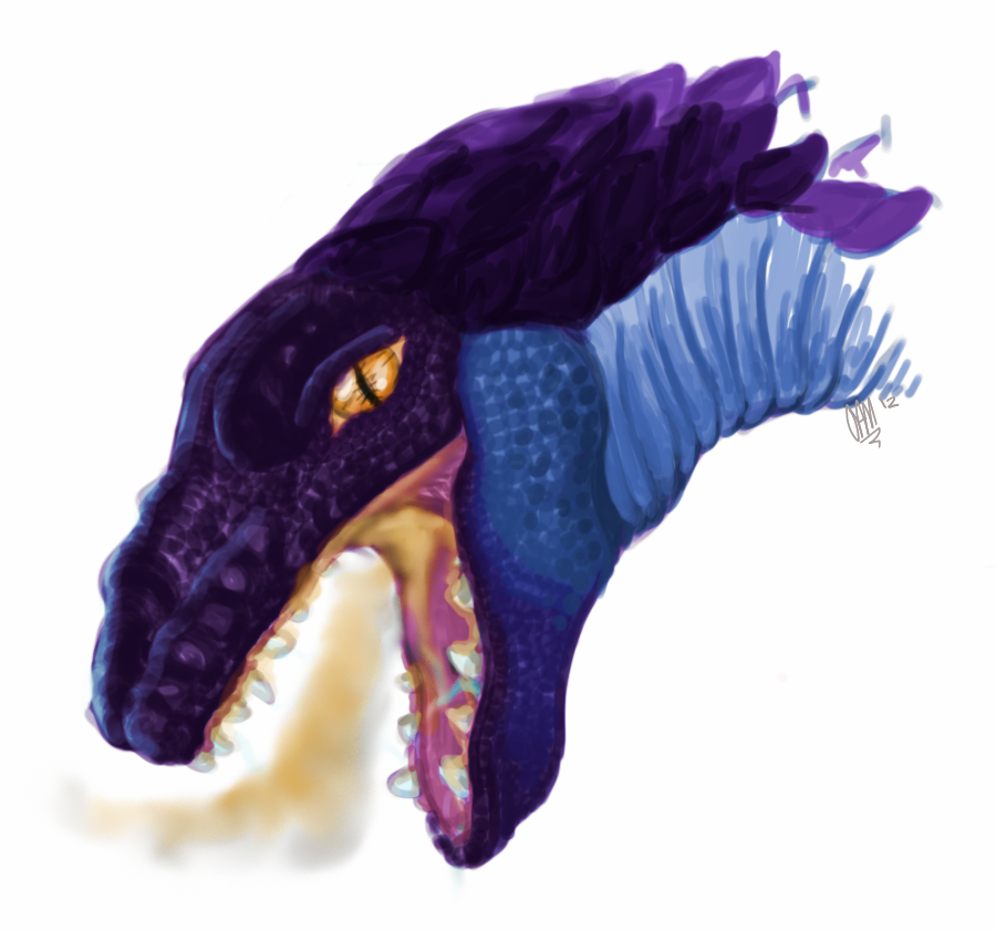 Dragon Profile
