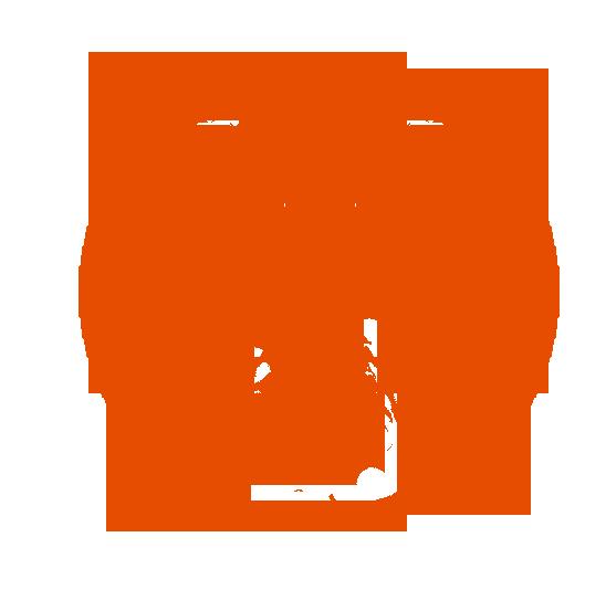 Radiation Phoenix