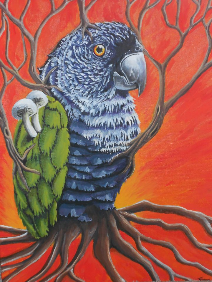 surreal Parrot