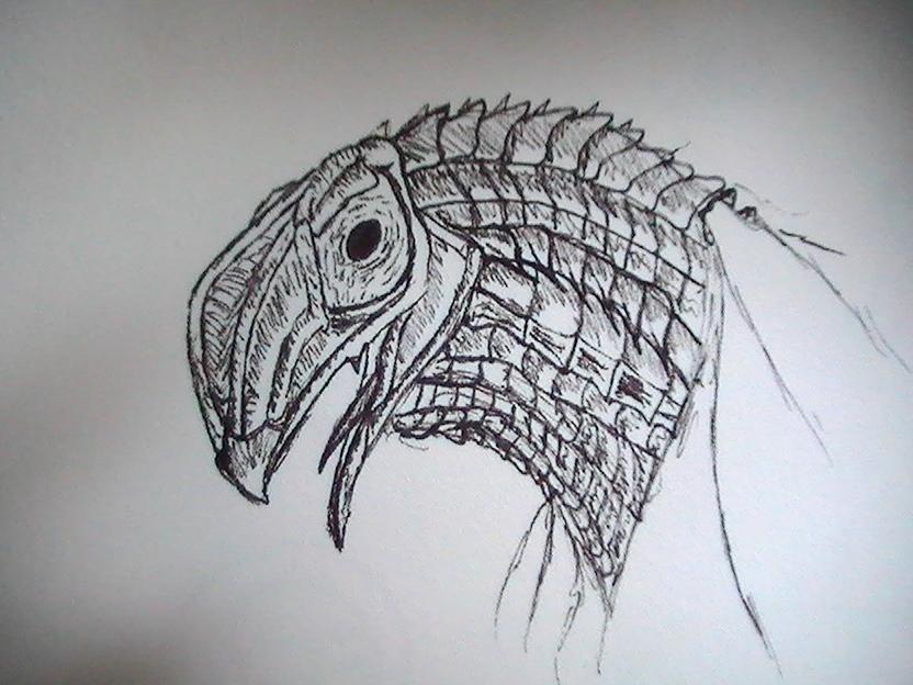 Bird Lizard
