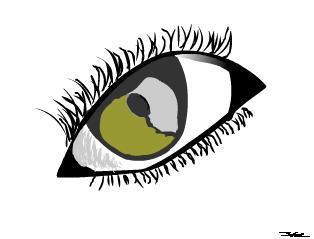 lost eye