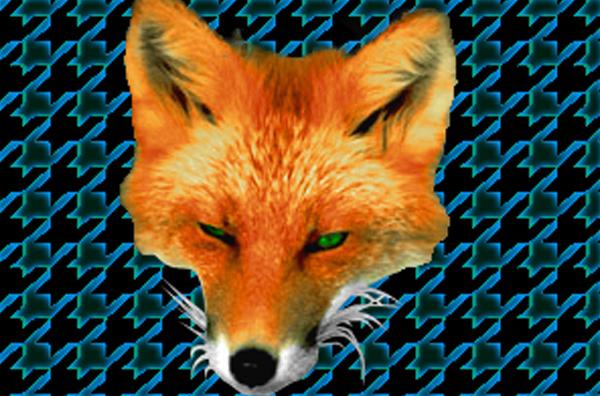 Fox Teeth