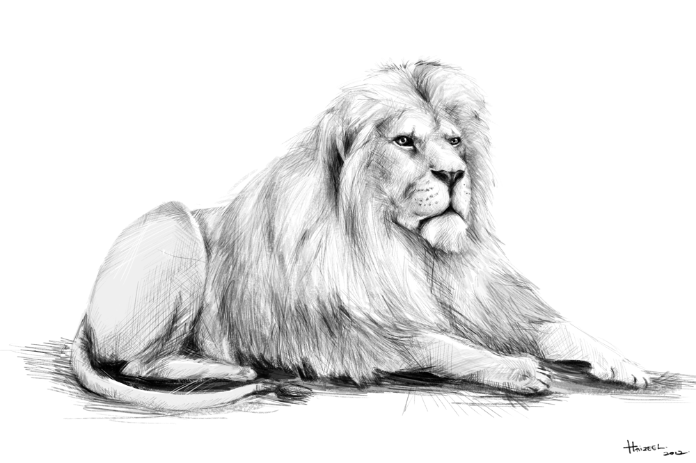 Lion At Peace