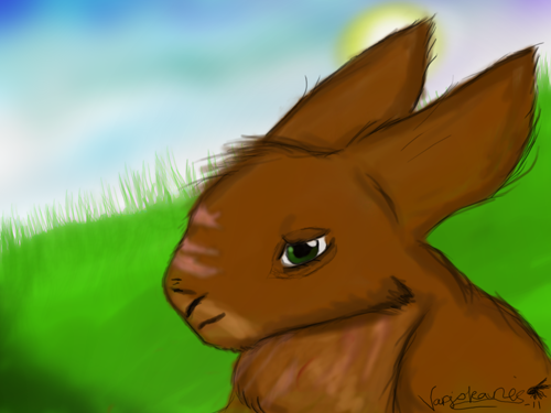 Rabbit from 2011