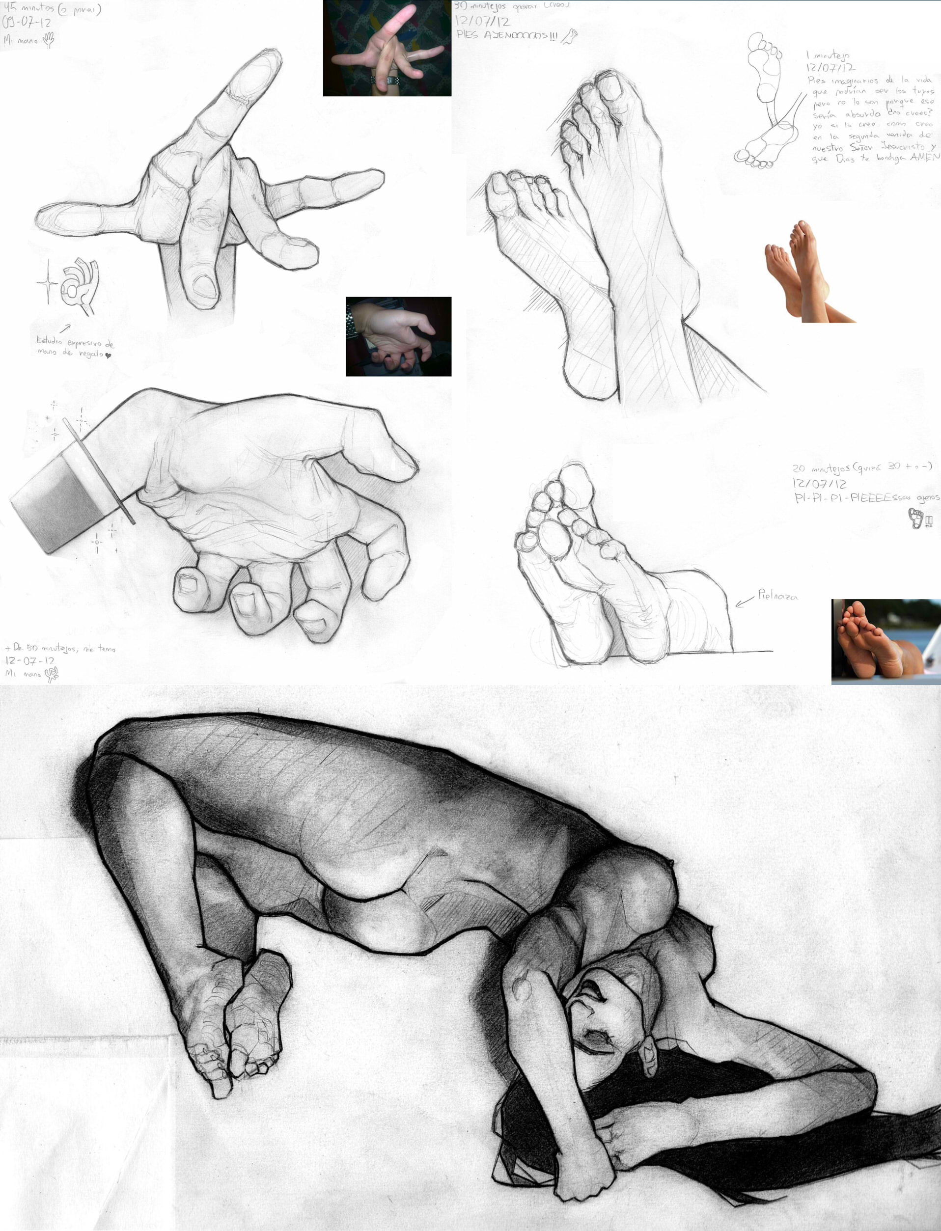 ESDIP Work - Anatomy Final HW