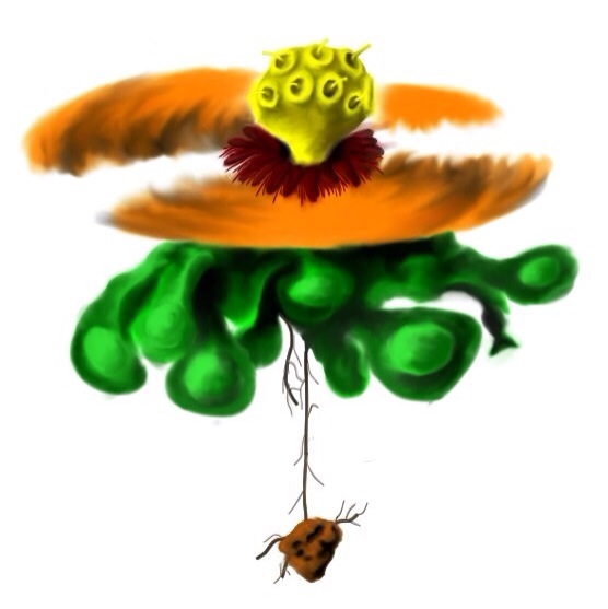 Heli flower