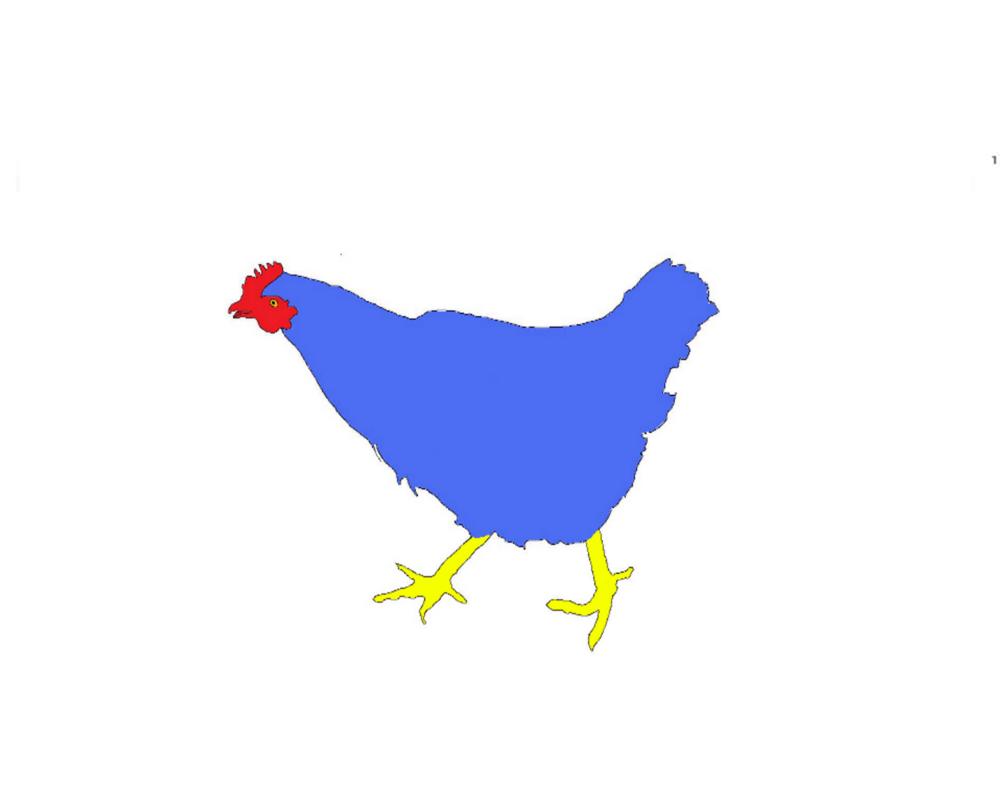 blue chicken
