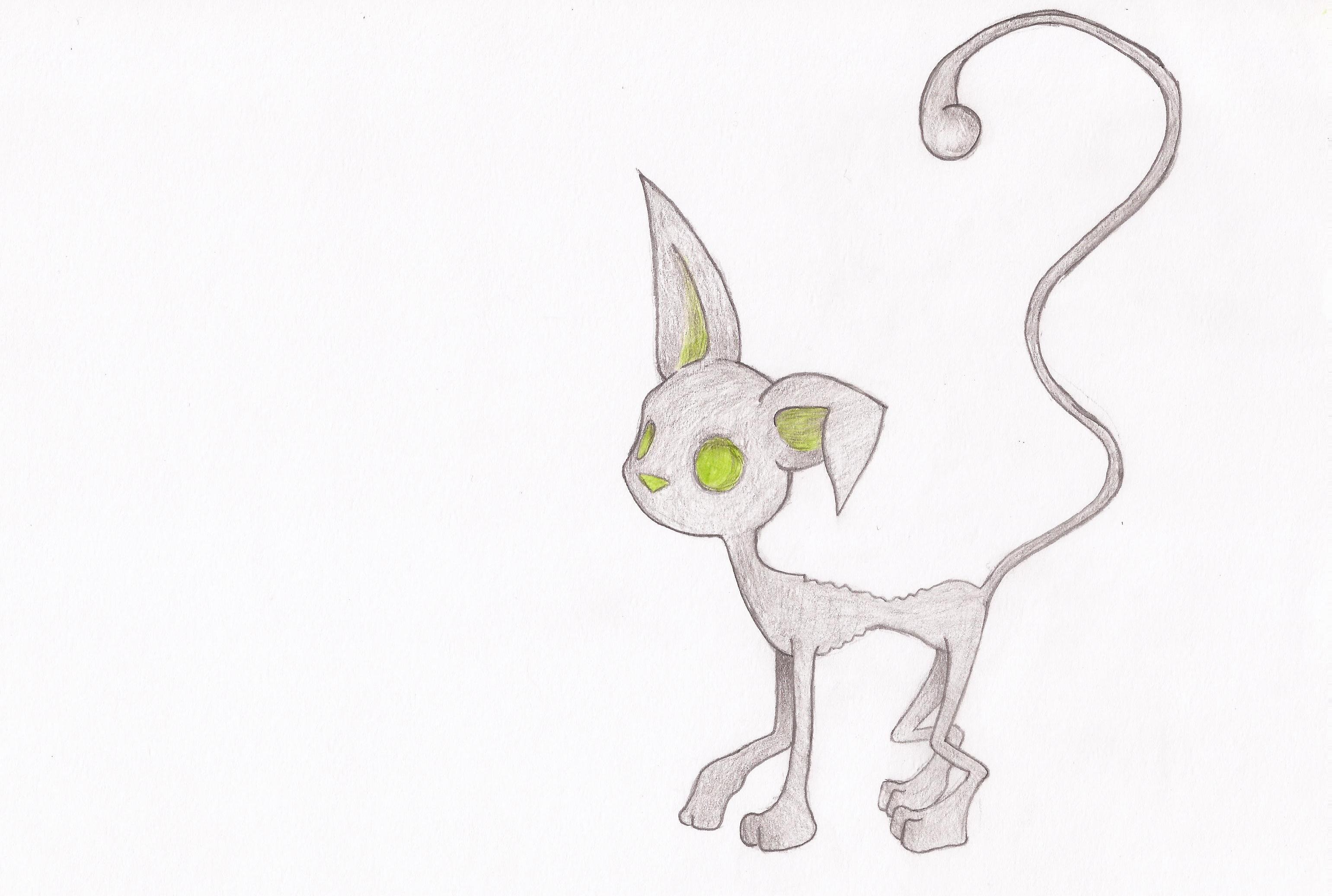 The Charquicat