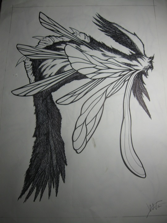 18x24 wings