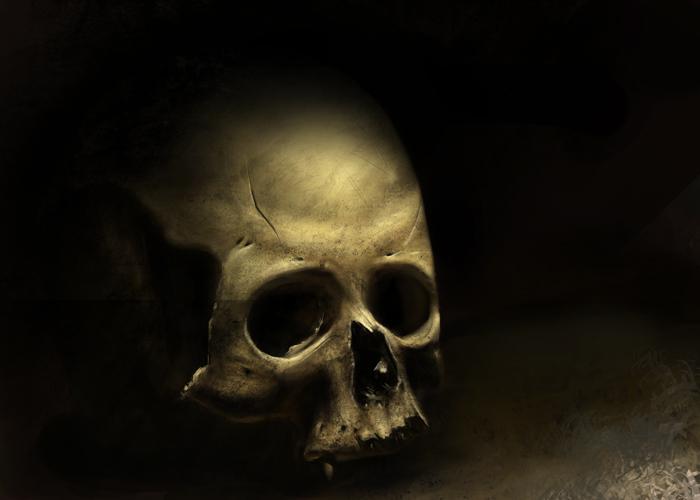 skull wip3