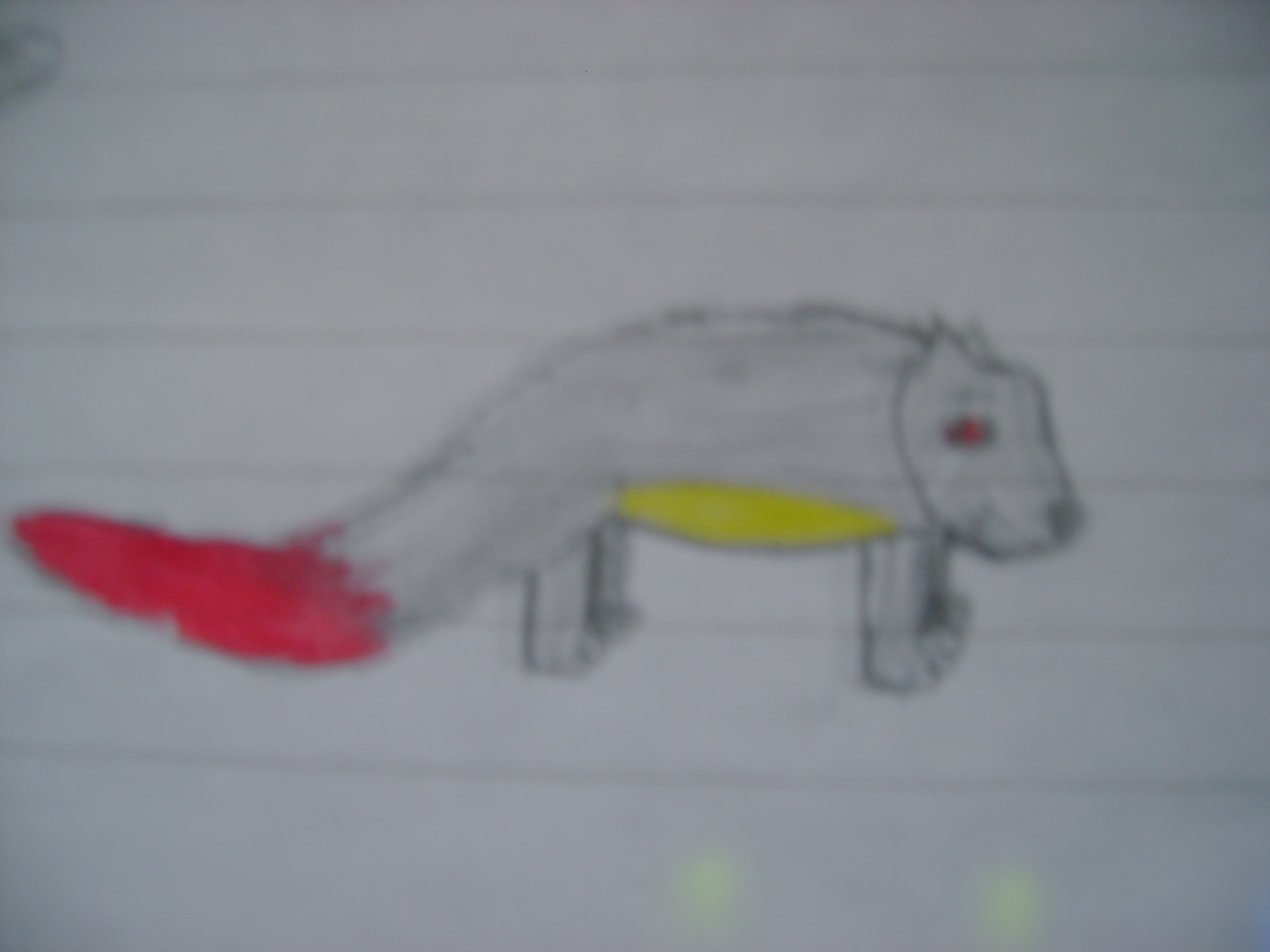 Random animal