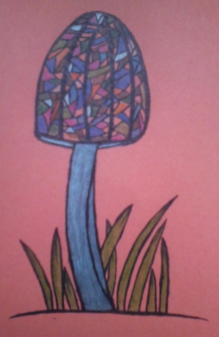The Magic Mushroom