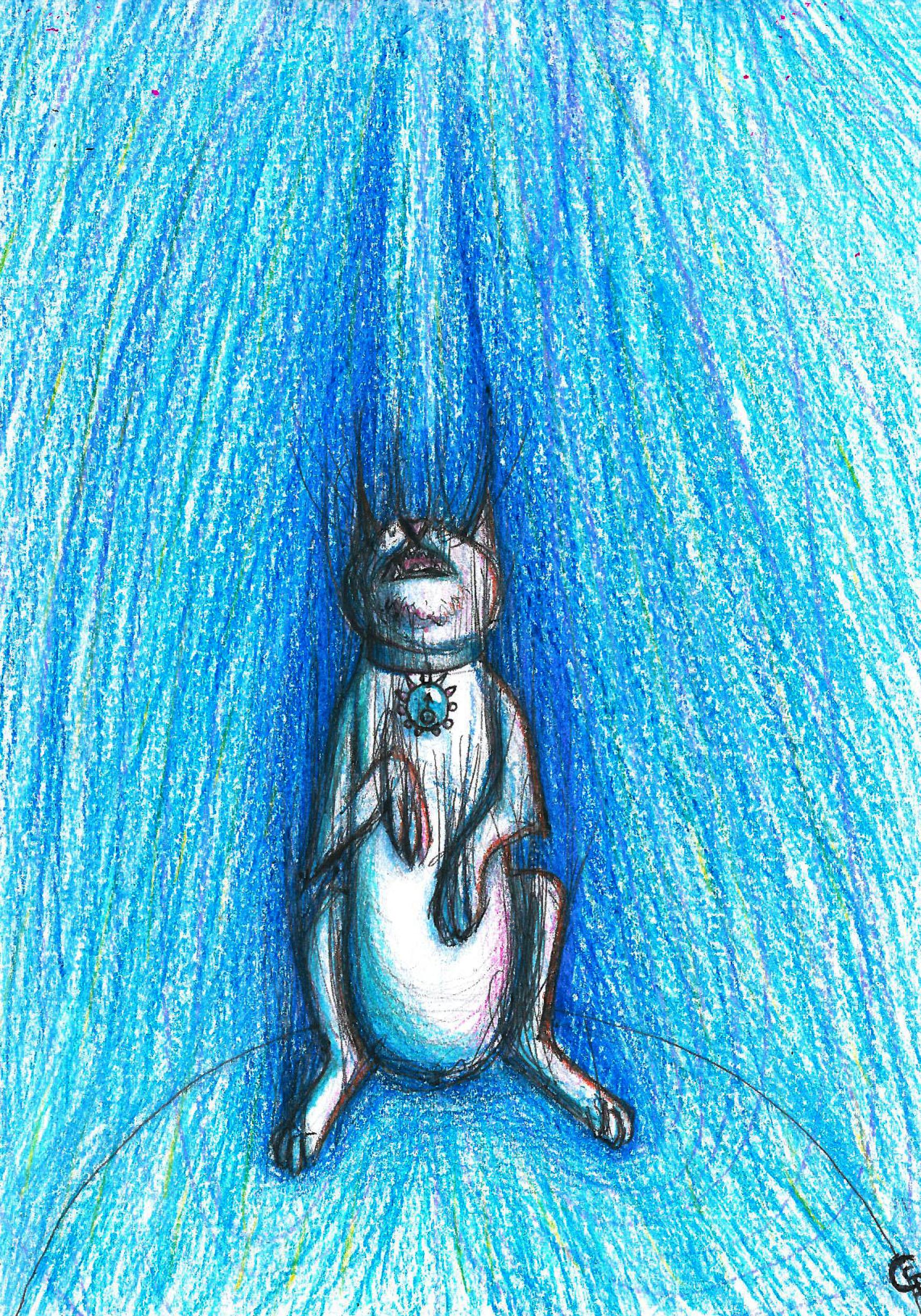 Uranus Cat