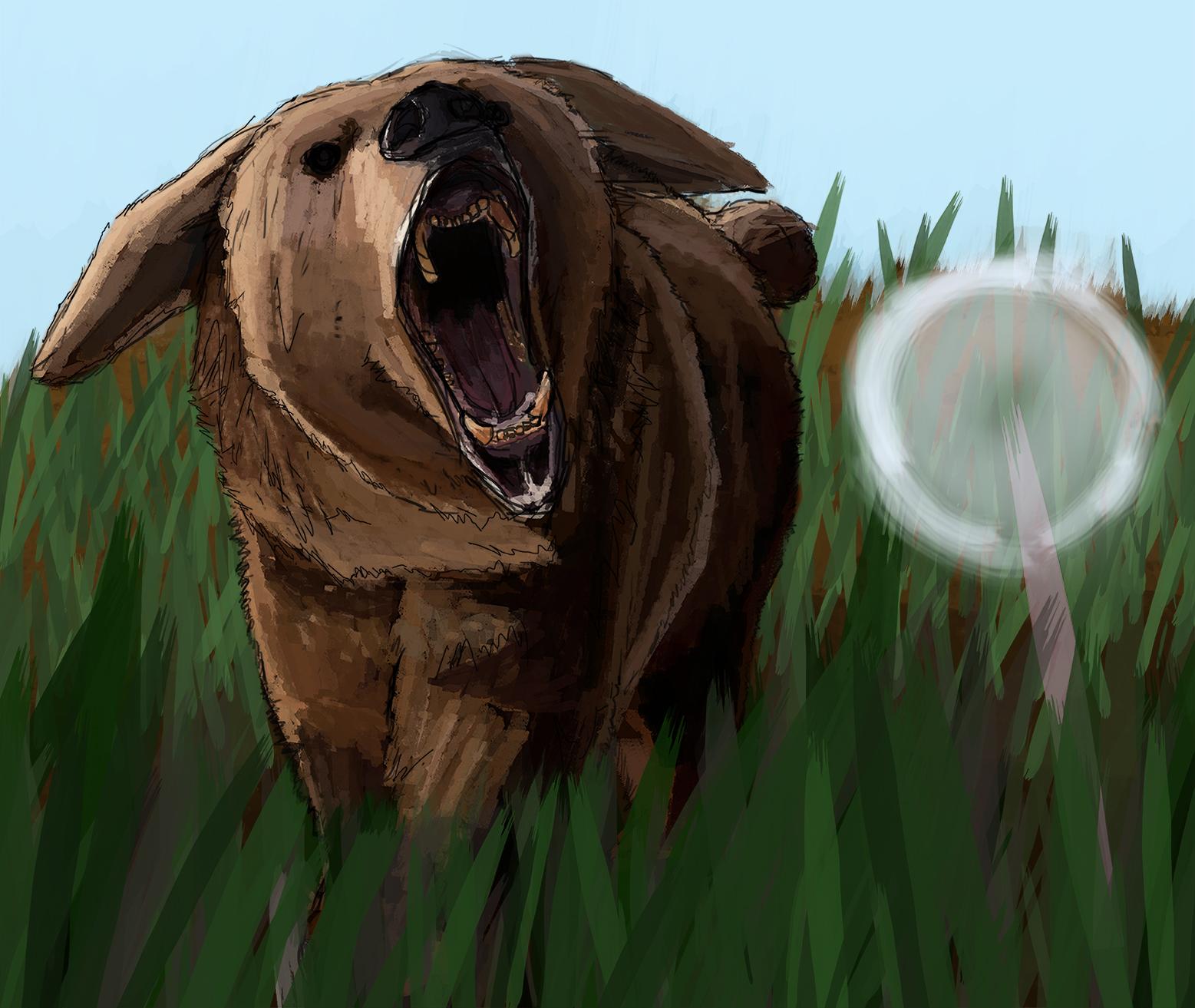 Bunybear