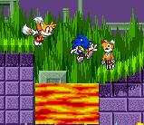 TAILS TO RESCUE!