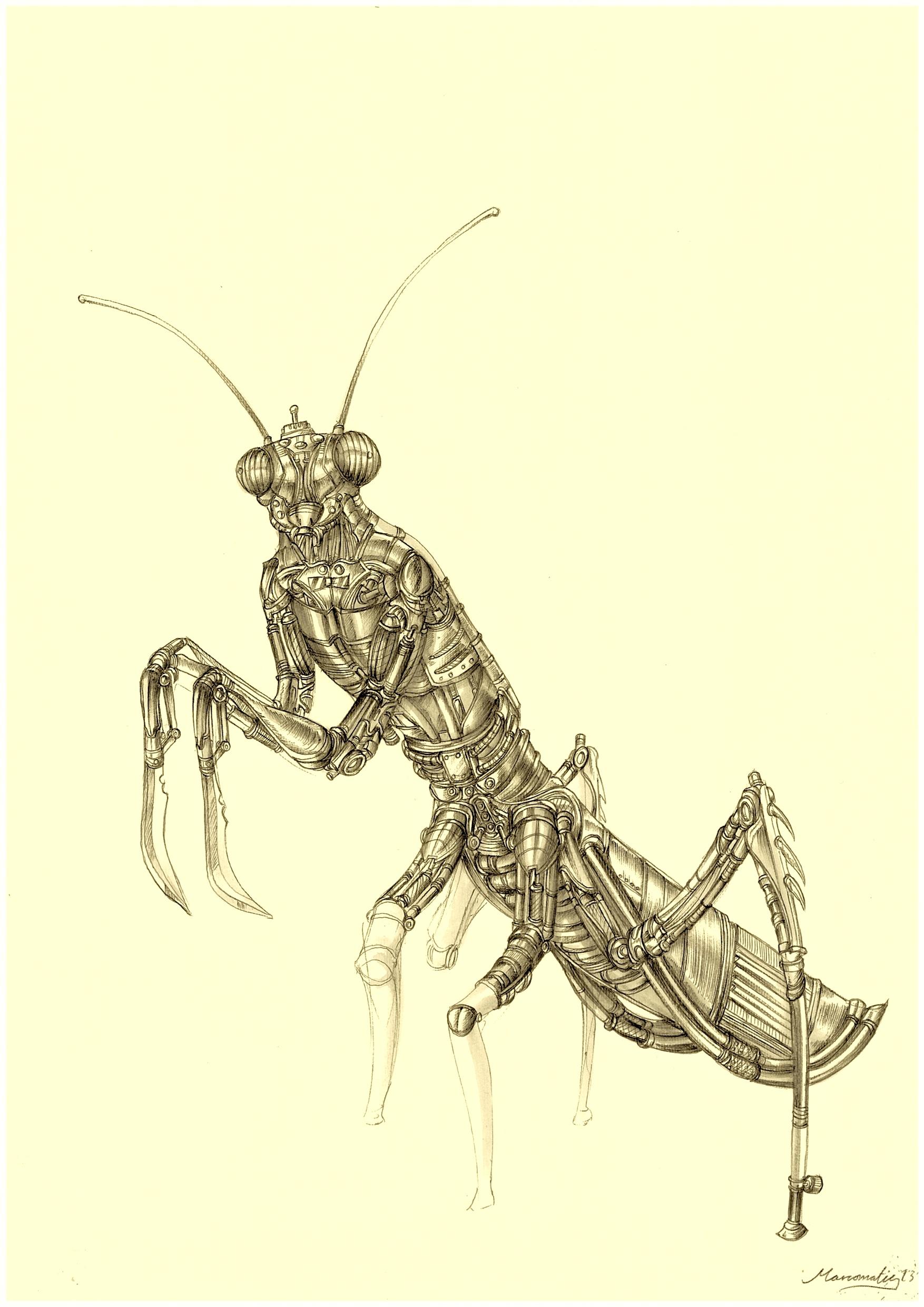 Sentinel Mantis