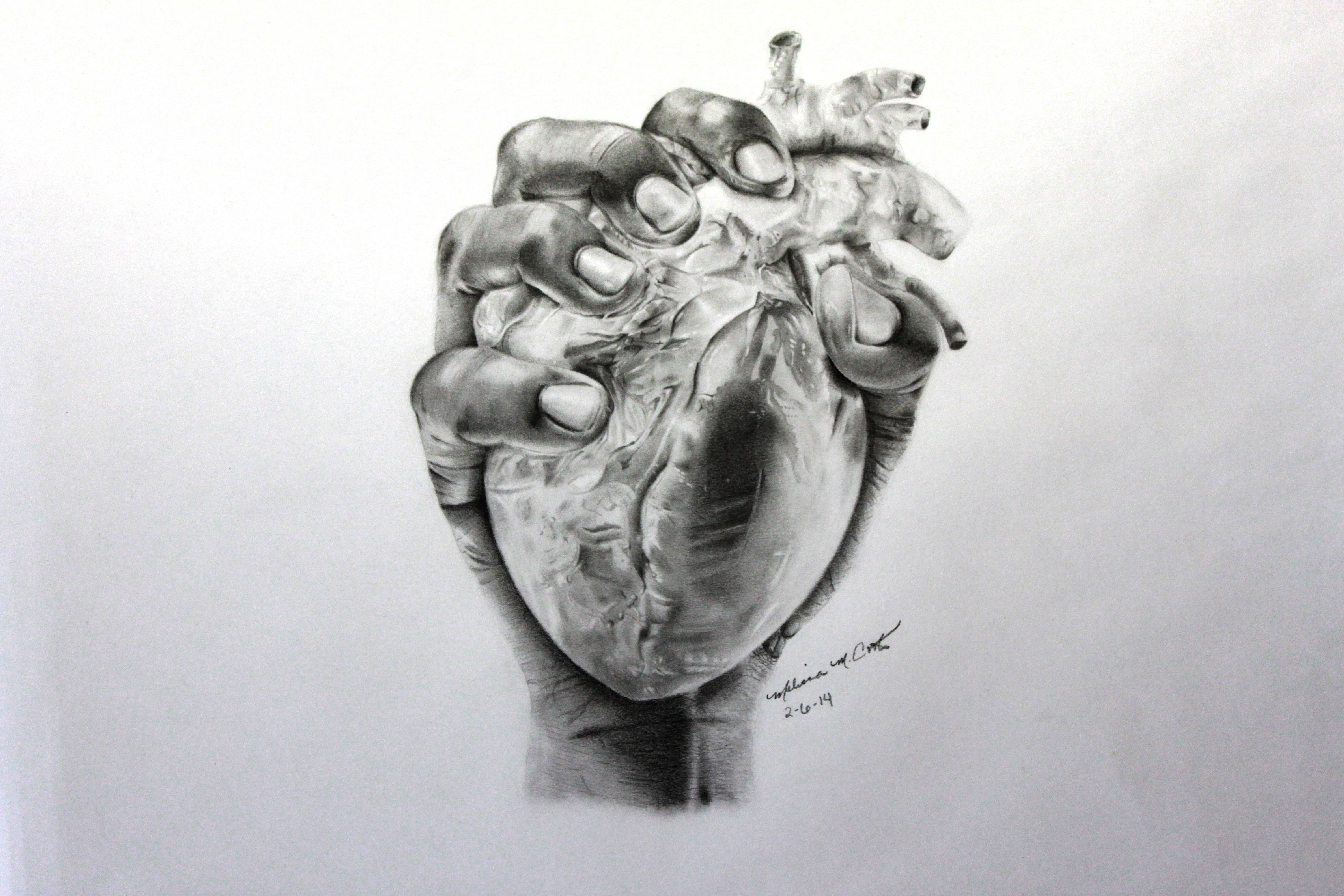 Heart Hands Drawing Heart in Hand Drawing