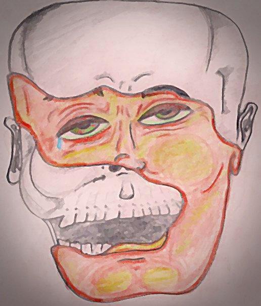 flesh bone and feelings