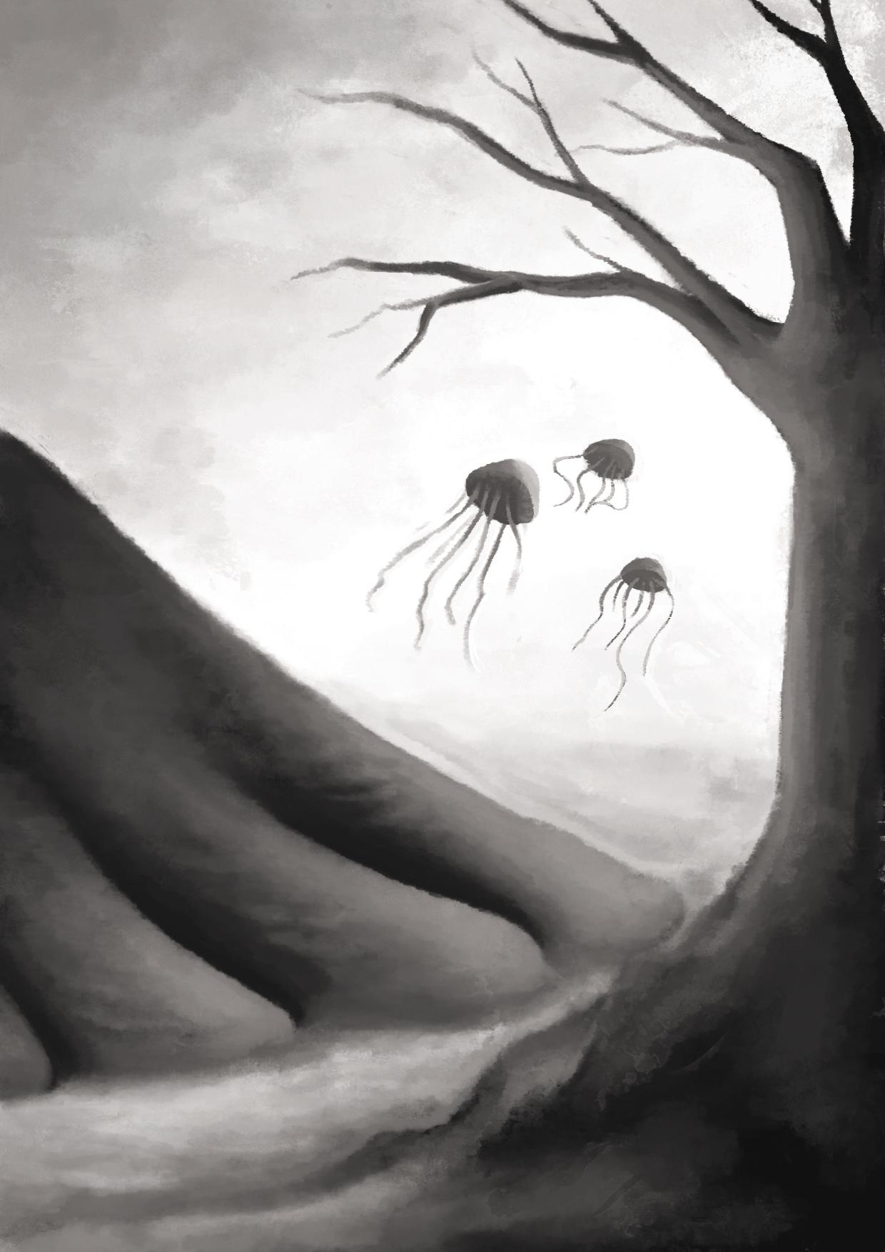 Medusas y pata