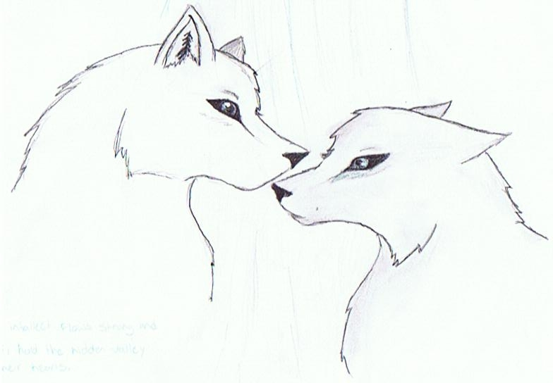 Aww wolves!