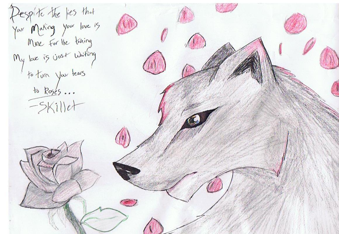 Romance Wolf!