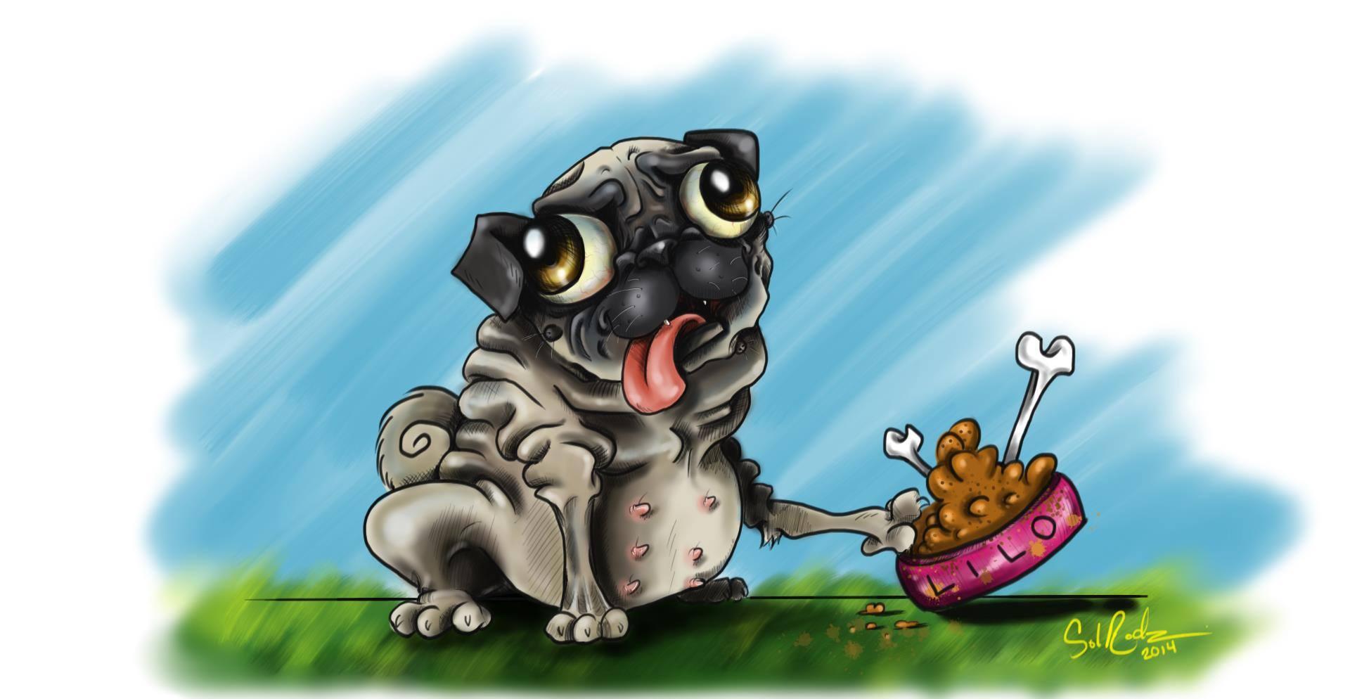 Lilo the Pug