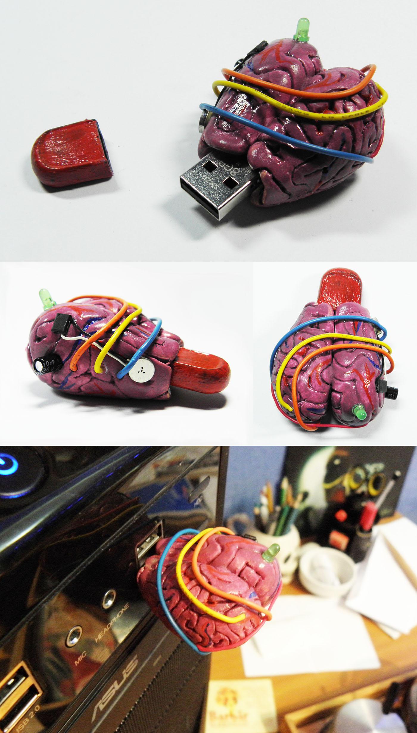 8gb USB brain