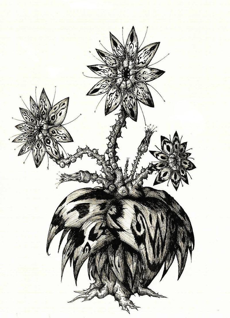 Dire Plant