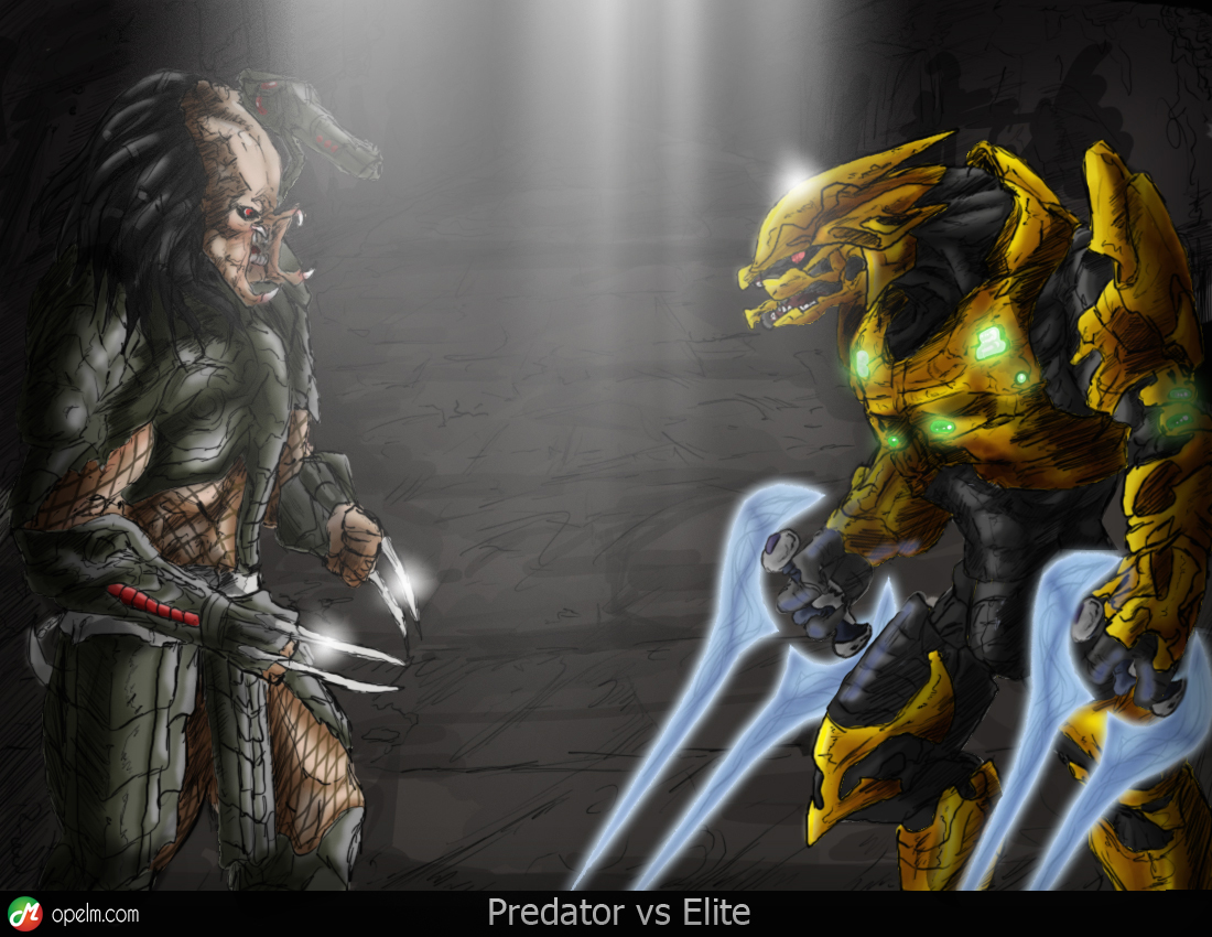 Elite VS Predator