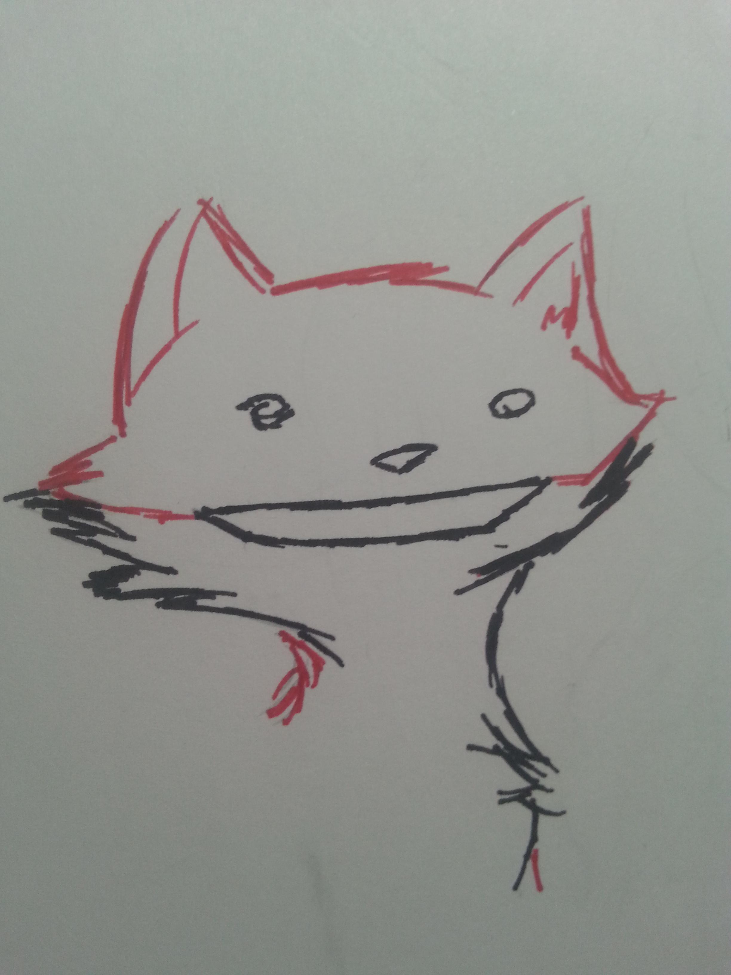 Cat Fox Thing