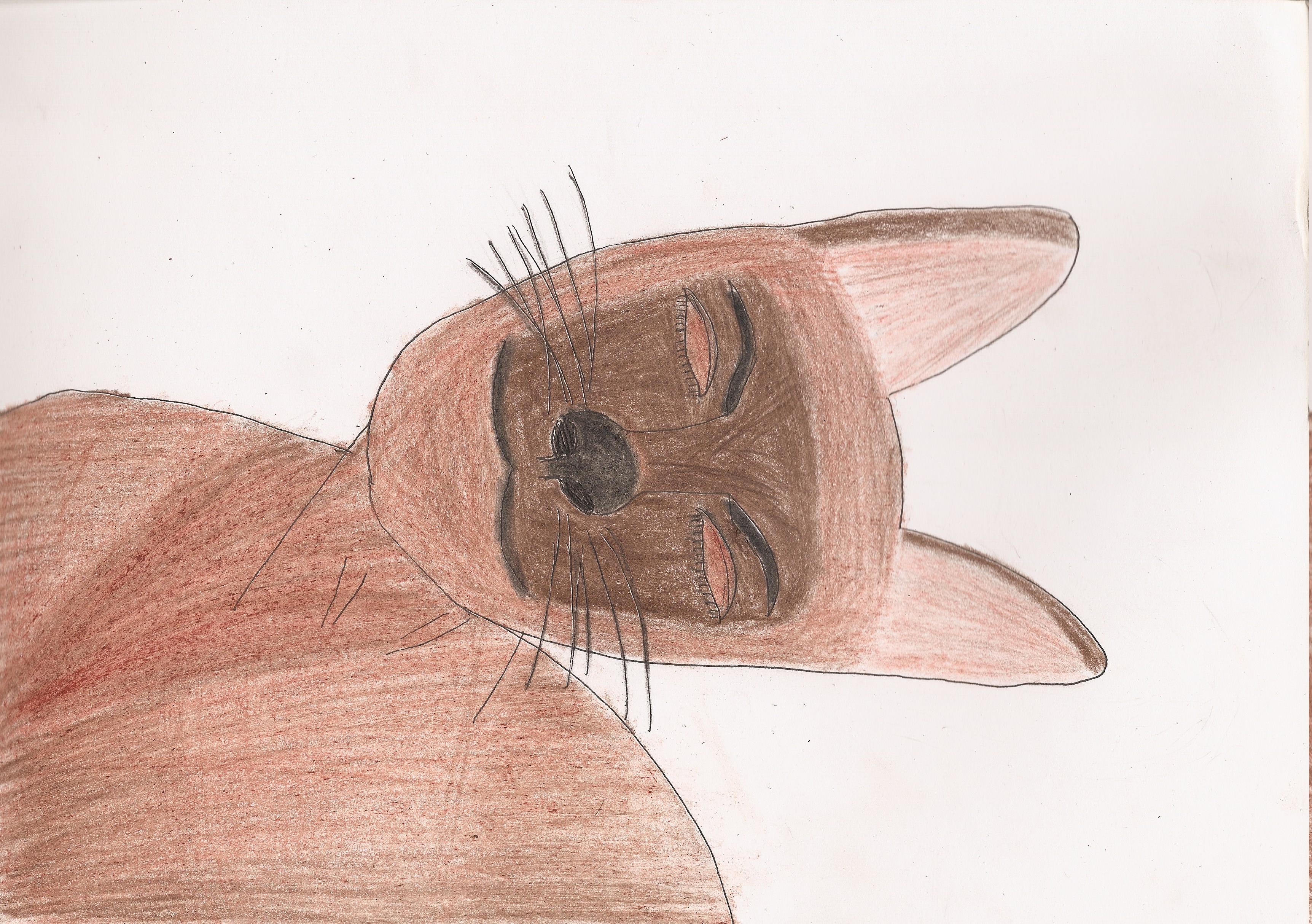 Portrait of LizaE