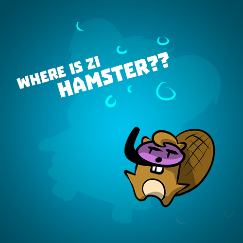 Where is zi hamster?