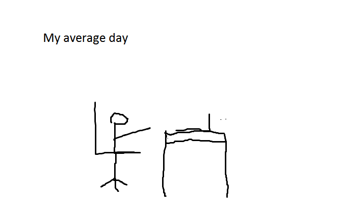 My average day