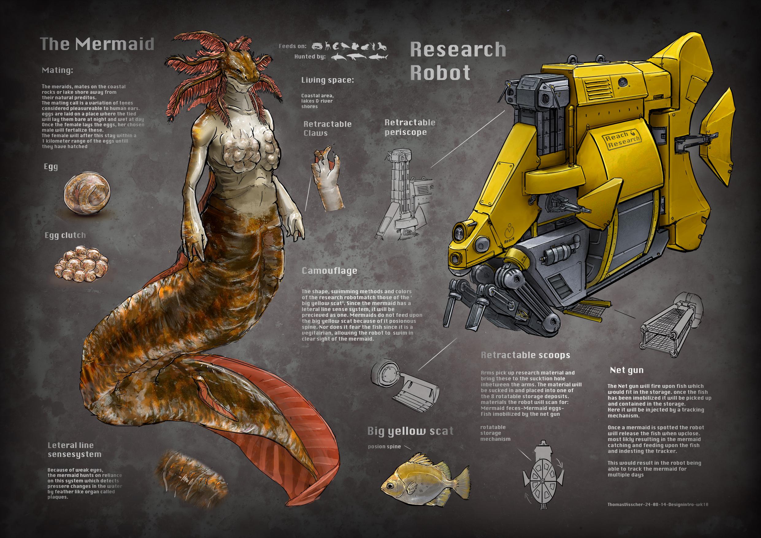 Mermaid research