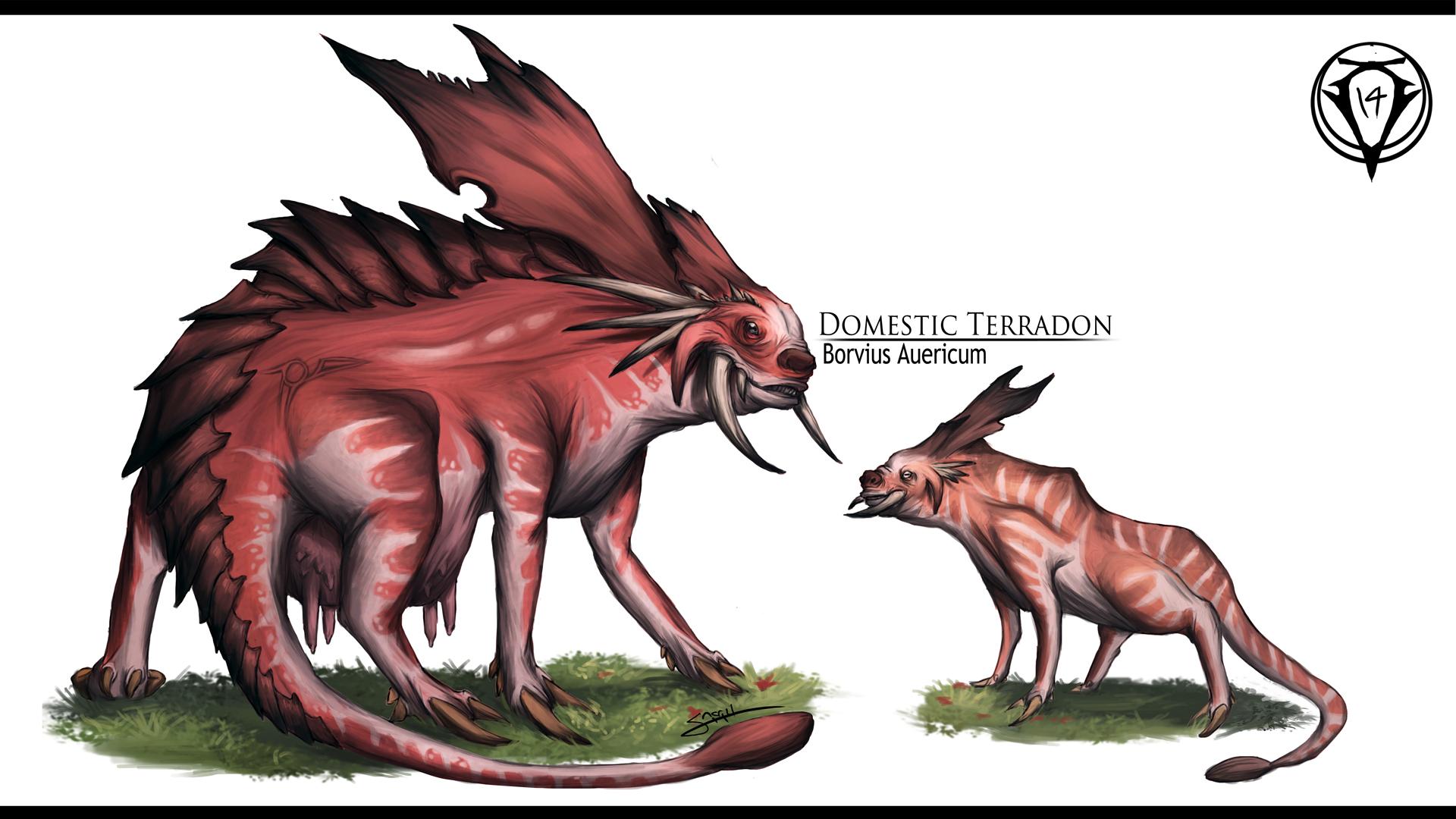 Terradon