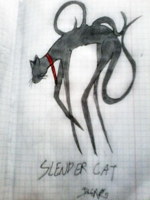 SLENDER-CAT! X3