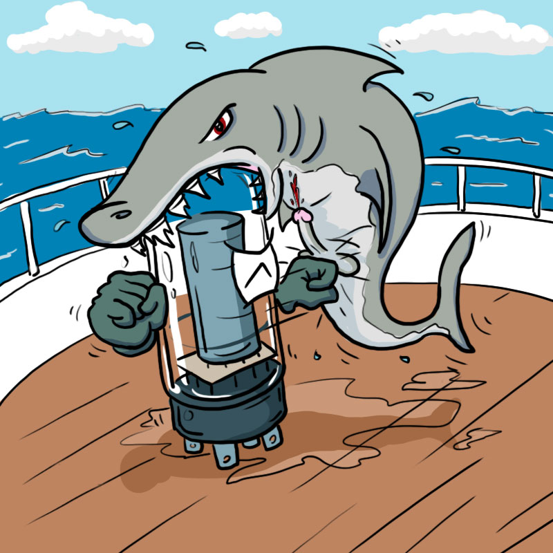 Shark Punch!