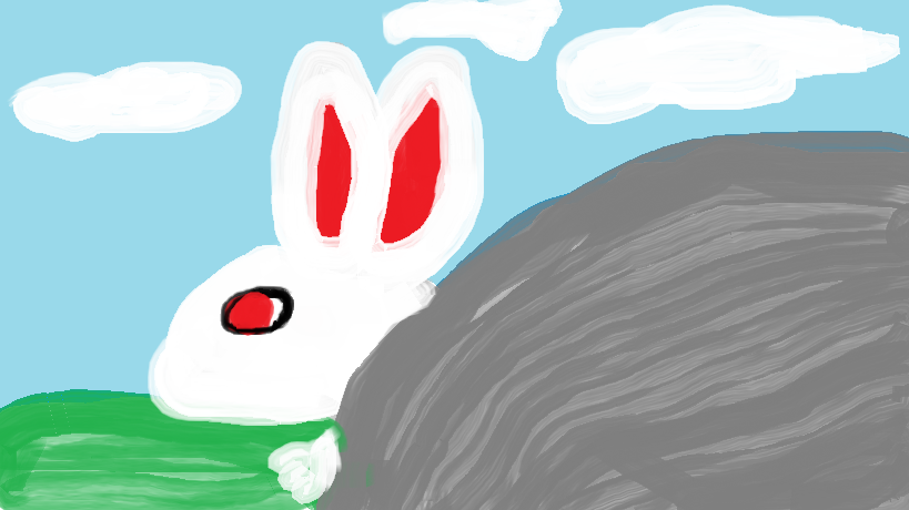 Rabbit by the Rock