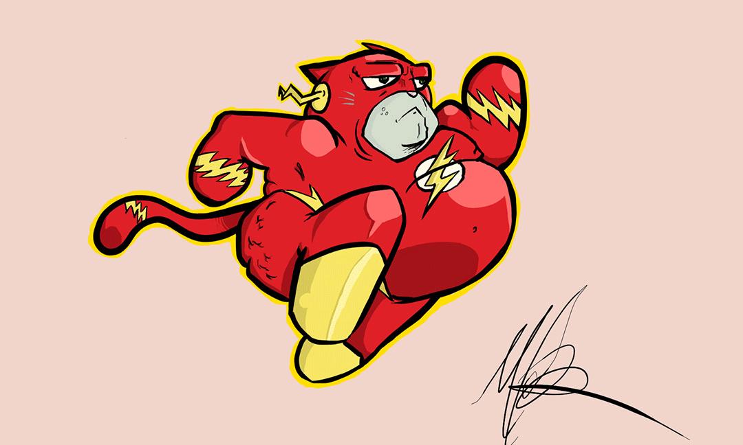 The Flash Puss