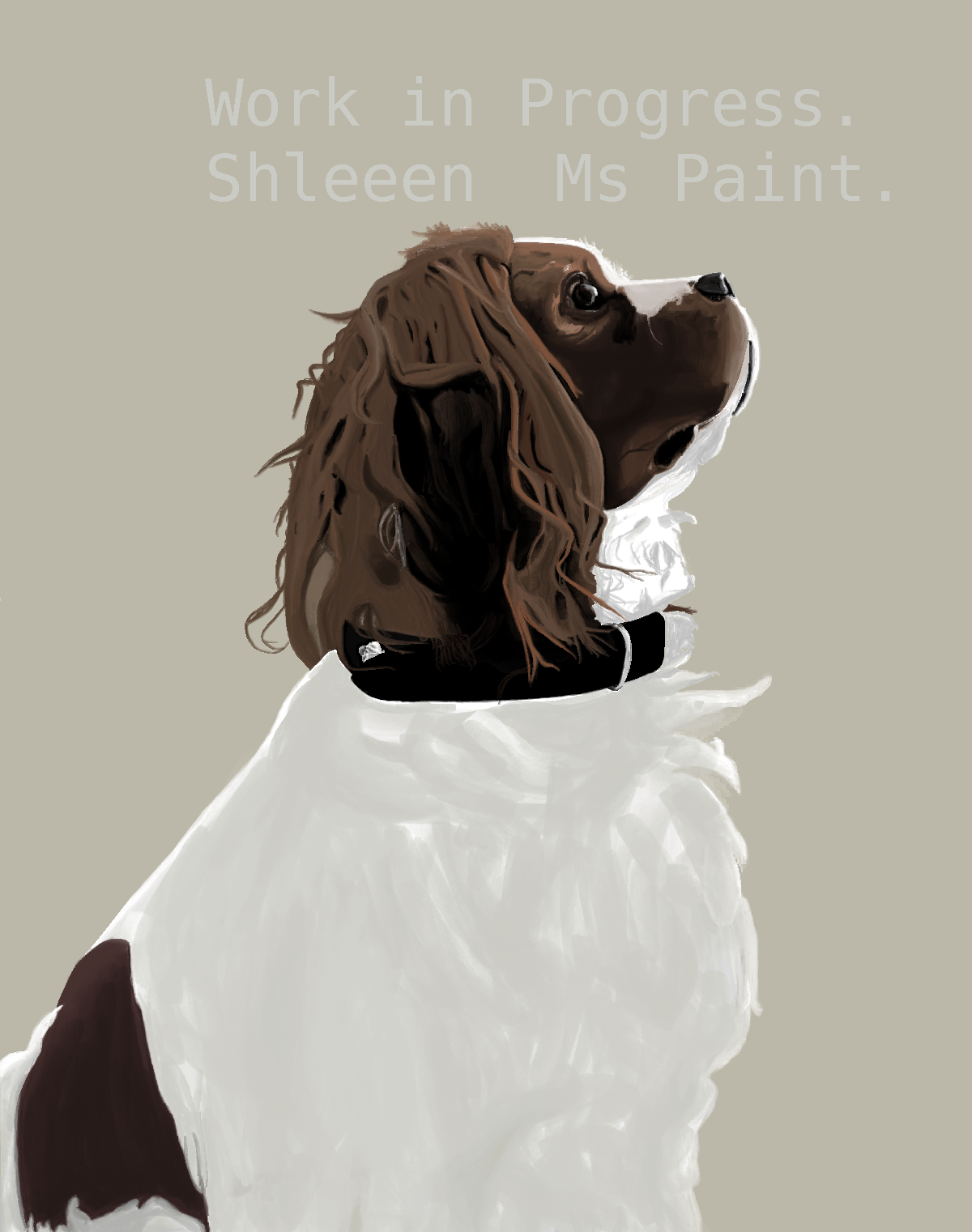 Ms Paint : Baloo