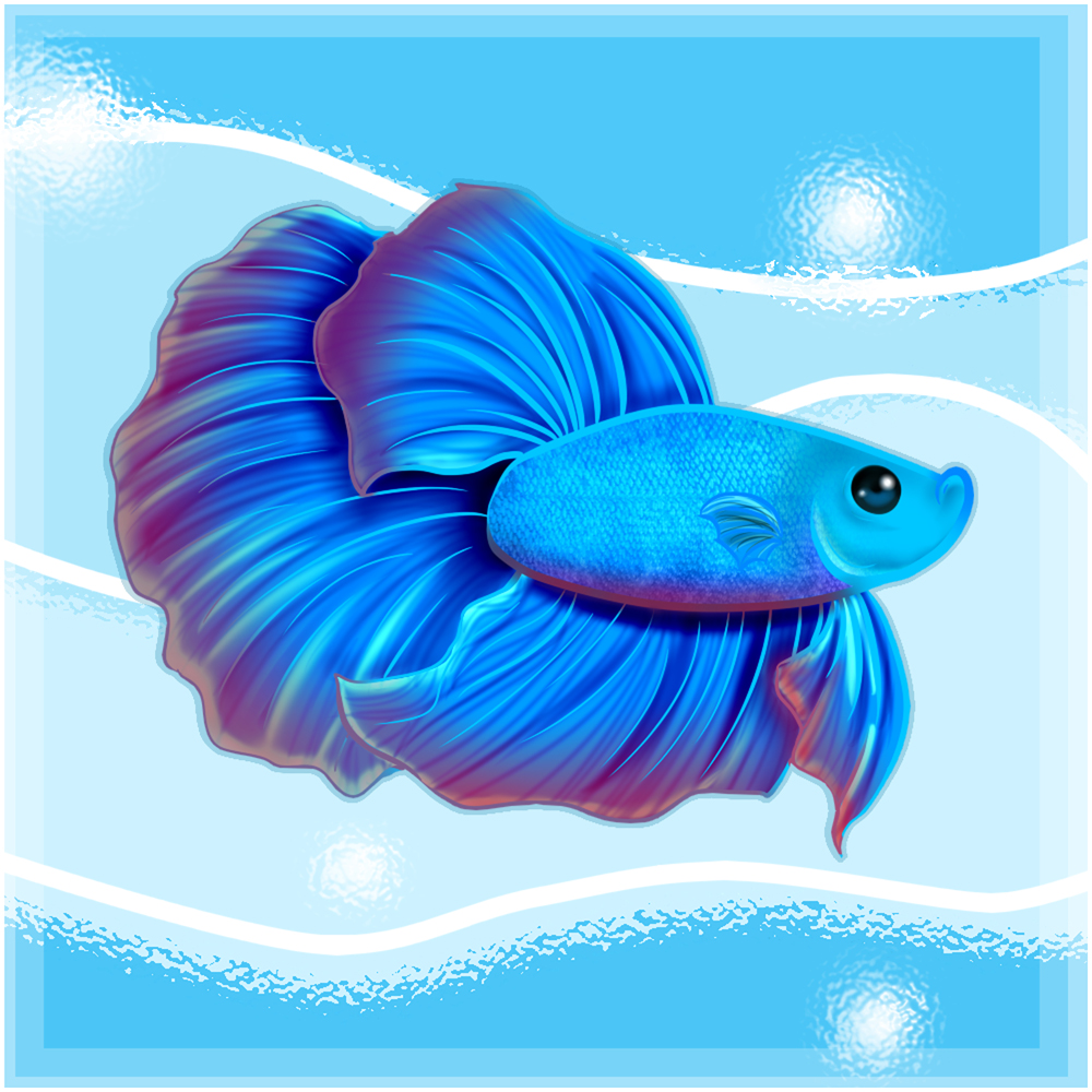 Kawaii Betta fishy
