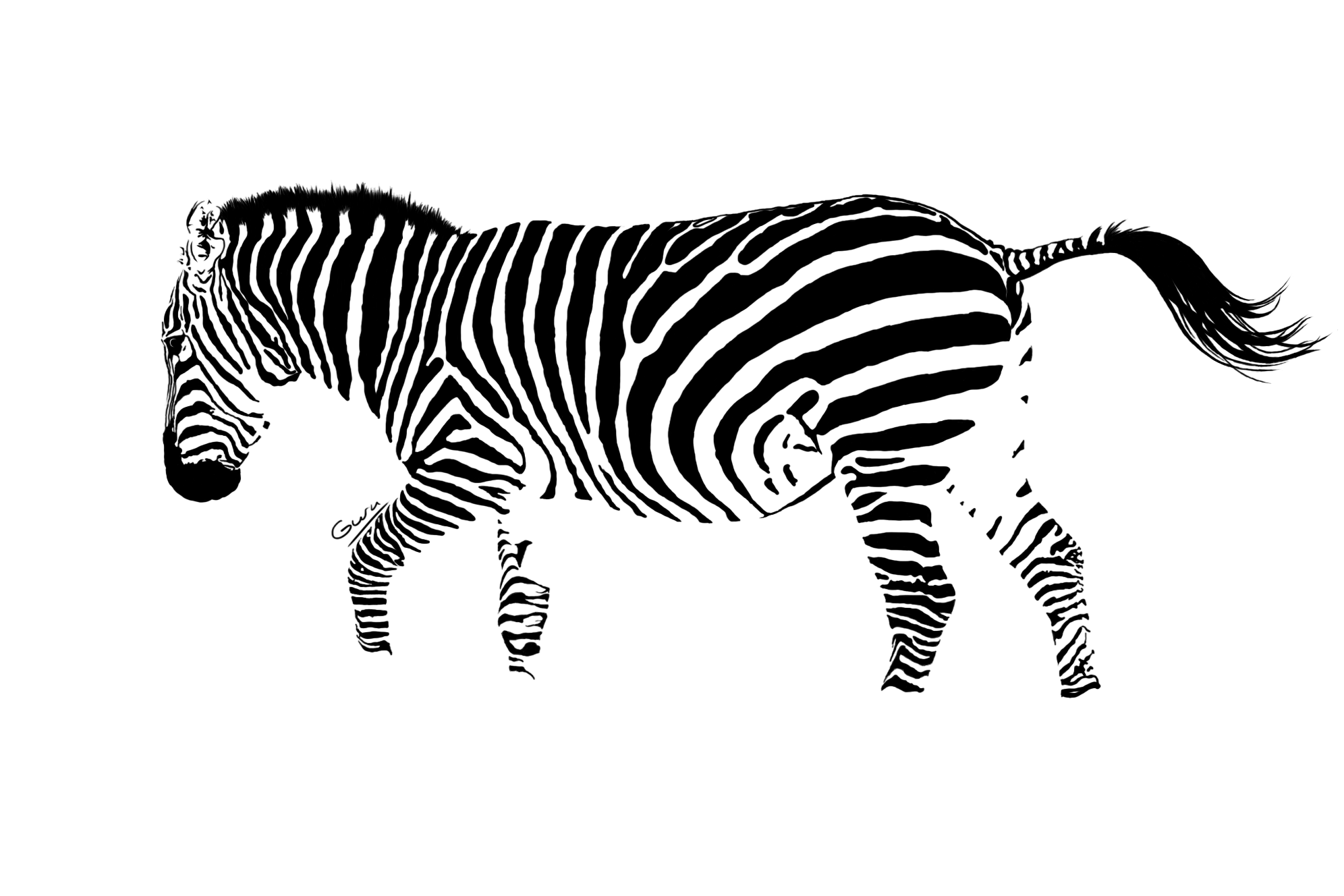Zebratracing